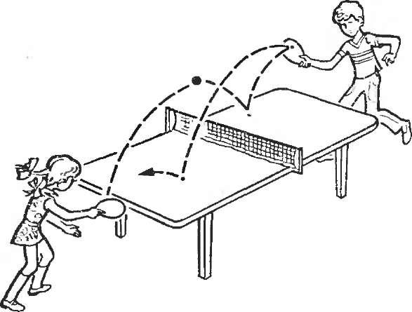 Как научиться играть в настольный теннис в домашних условиях 256